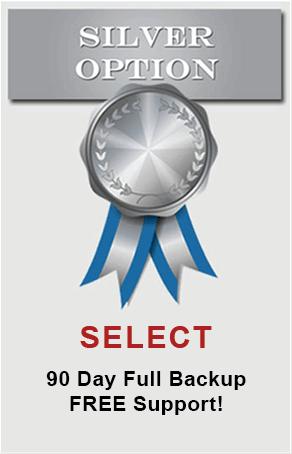silver option